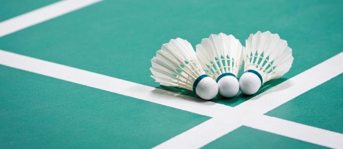badminton.gen
